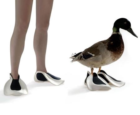 Duck Sho