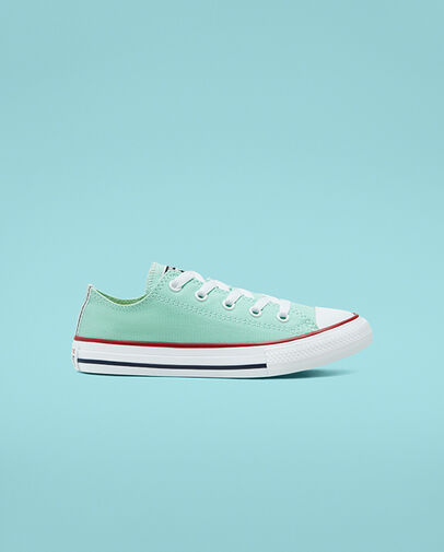 Converse Seasonal Color Chuck Taylor All Star BigKids LowTopShoe .